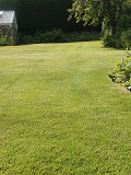 KMG Quality Hard Wearing Lawn Grass Seed
